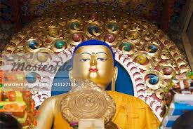 Shimla Kullu Manali Dharamshala Dalhousie Trip Package