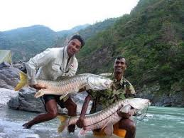 Palampur Tourist Places - Fishing In Palampur