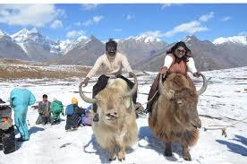 Honeymoon In Shimla Kullu Manali Dharamshala Dalhousie Chandigarh