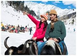 Honeymoon Couple In Solang Valley, Manali