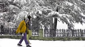 Shimla Kullu Manali Budget Honeymoon