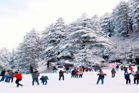 Kufri, Shimla
